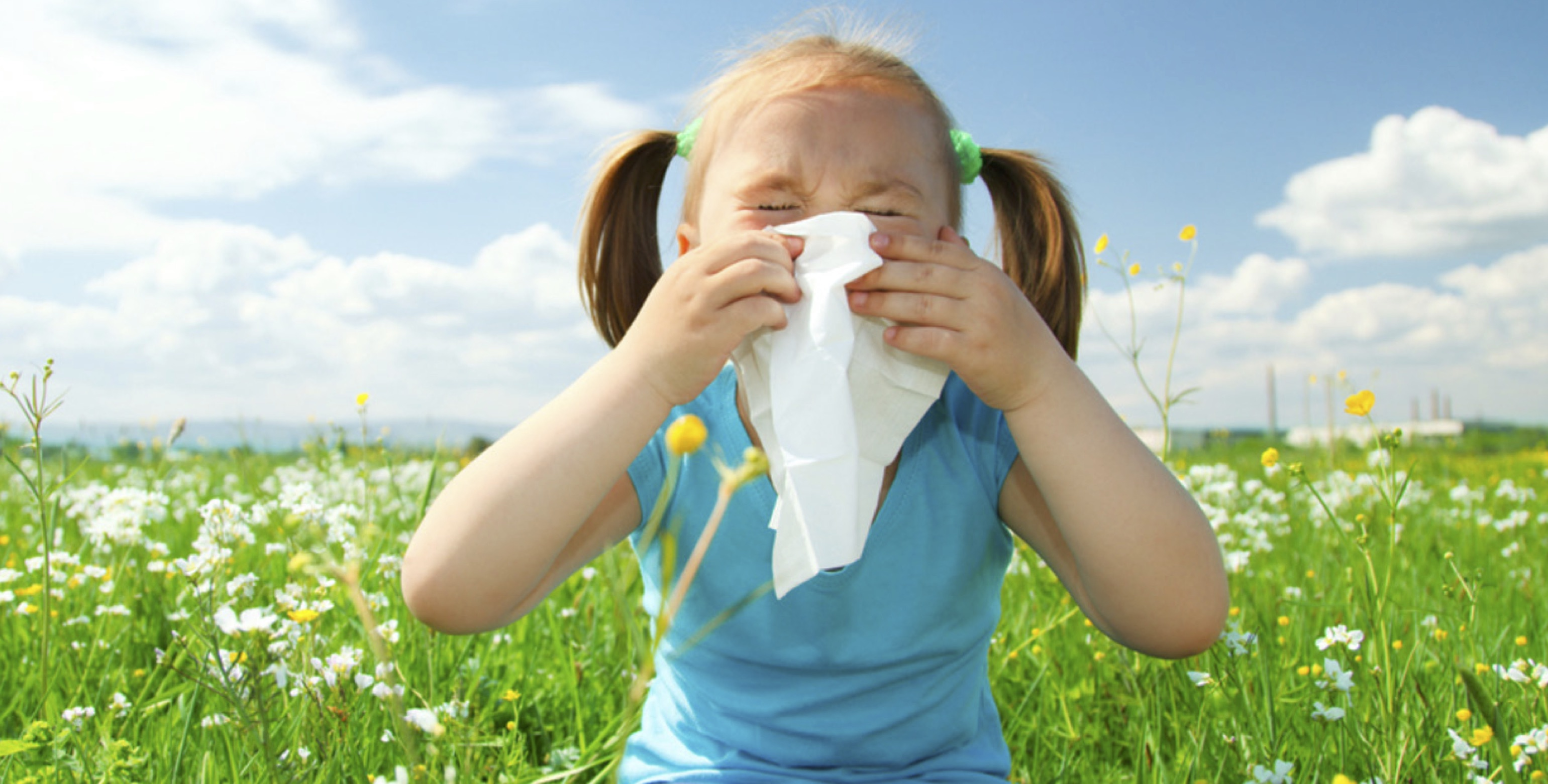 child hay fever